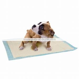 zolux tapis educateur chiot With tapis educateur chien