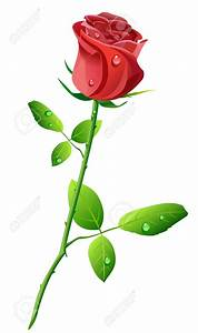 Rose With Stem - ClipArt Best