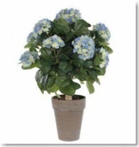 Hortensie Im Topf : k nstliche pflanzen kunstpflanzen k nstliche gr npflanzen ~ Eleganceandgraceweddings.com Haus und Dekorationen
