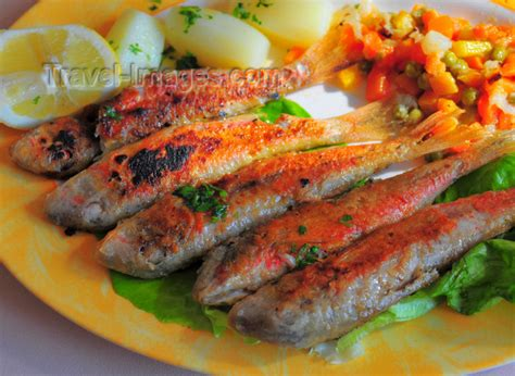 algerie cuisine cuisine of algeria