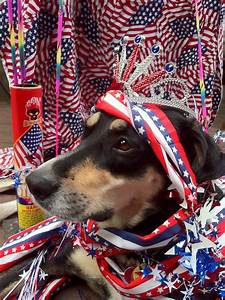 the most patriotic photos according to