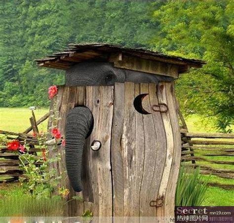 natur und umwelt german china org cn lustige fotos