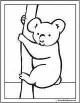 Koala Coloring Pages Peek Boo Sheet Koalas Realistic Colorwithfuzzy Results sketch template