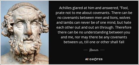 homer quote achilles glared    answered fool