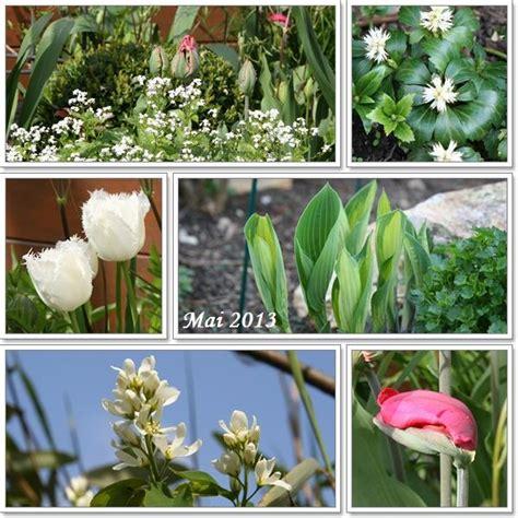 Der Garten Ist Der Letzte Luxus Unserer Tage by Minig 228 Rtchen 2013 Teil 2 Fr 220 Hling Page 74 Mein