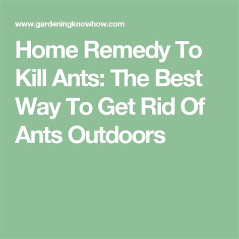 best way to get rid of ants 79 best effective microorganisms images on pinterest microorganisms permaculture and organic