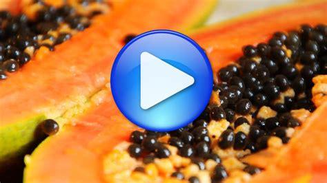 papaya essen anleitung papaya essen papaya essen zubereitung der exotischen frucht papaya essen 20 gesunde und