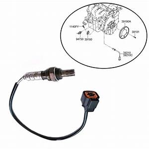 File  Hyundai Oxygen Sensor Wire Diagram 4