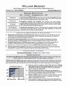 award winning ceo sample resume resume writers chicago With award winning resume templates
