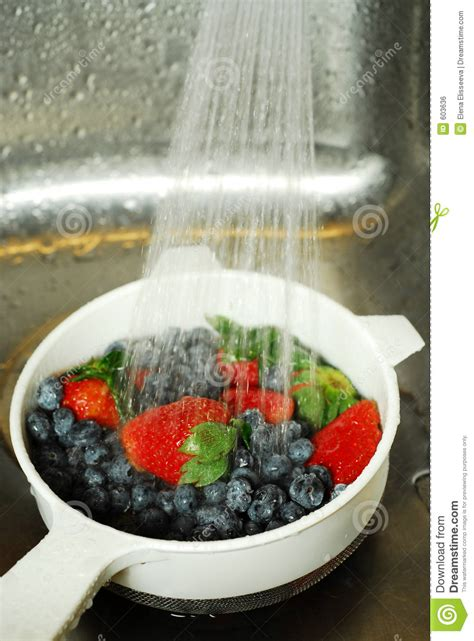 how to wash blueberries washing berries royalty free stock image image 603636