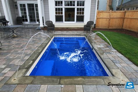 palladium plunge model pool  leisure pools signature