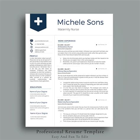 Professional Nursing Resume Writers by Professional Resume Template Resume Templates