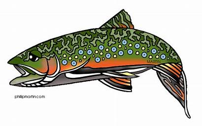 Trout Fish Clipart Brook Virginia Fishing State