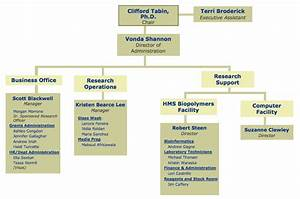Production Department Chart Administrative Organization May 2015 Hms Department Of