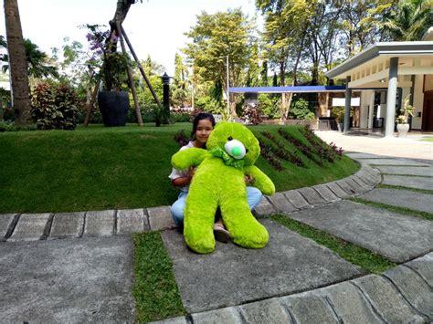 jual beli beruang teddy boneka jumbo besar hijau