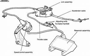 Wiring Diagram For 2001 Dodge Ram 1500 5 9 Distributor