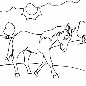 Horse Simple Coloring Pages | freecoloring4u.com