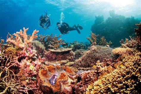 Great Barrier Reef Receives $500 Million Funding | Aussie Boat Loans