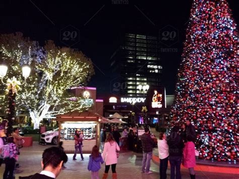 christmas trees irvine 113 collection of trees irvine all about decoration 2018