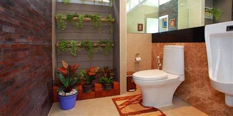 tanaman hias dekorasi kamar mandi ragam tanaman