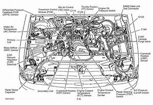 58 Liter Ford Engine Diagram