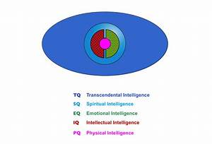 Spiritual Intelligence and the Full Spectrum of Intelligence