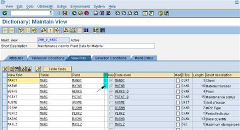 mara table in sap saptechnical com creation of a view cluster