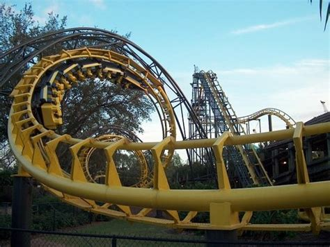 busch gardens image search results