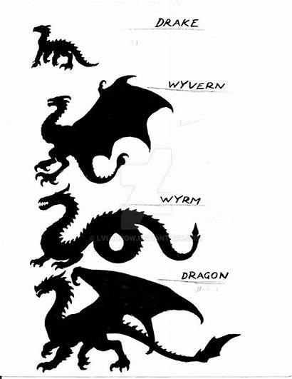 Dragon Species Fantasy Deviantart Mythical Dragons Creatures