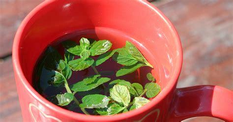 Padomi tējas vārīšanas procesā - kurām tējām pietiek ar ...