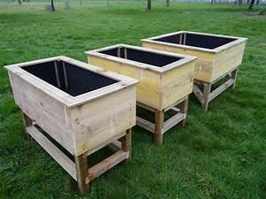 Potager En Bac : jardinage debout pour jardinier malin mon potager en carr s ~ Preciouscoupons.com Idées de Décoration