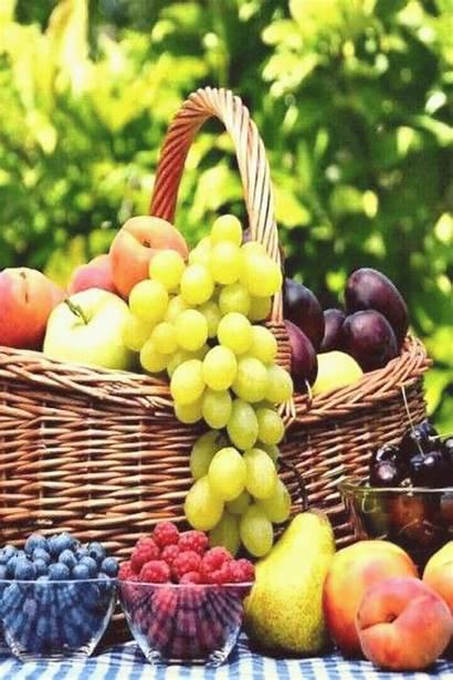 Fruit Vegetables Veg Vegetable Ru Fruits Fruitgracelynnmagazine