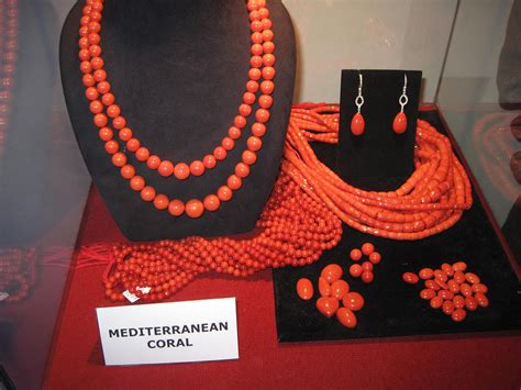 red coral whats  future living oceans