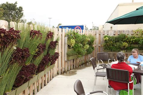 Outdoor Vertical Garden by Living Walls That Work Livewall Green Wall System
