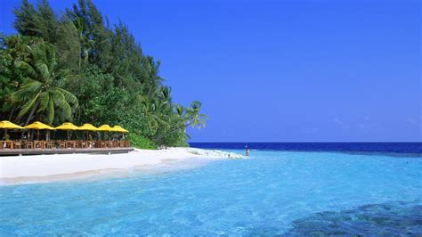 nice beach  blue sea wallpaper hd wallpapers