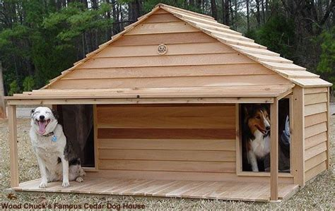 beautiful  dog house plans   dogs  home plans design