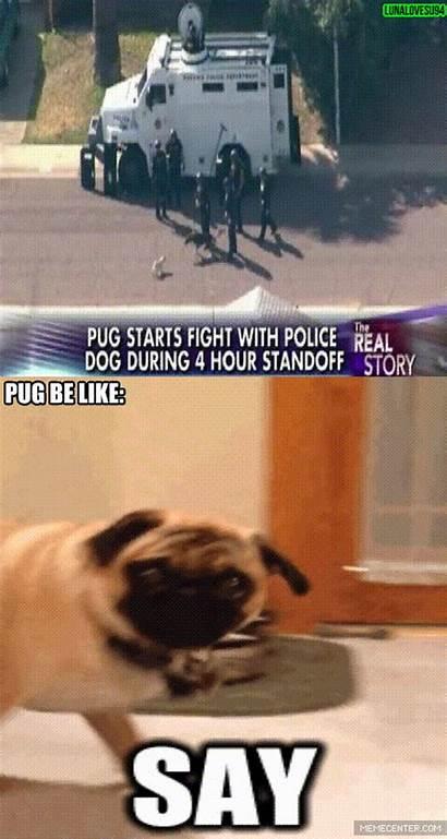 Pug Funny Badass Memes Jokes Gifs Police