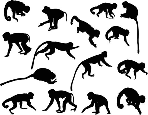 animal monkey silhouette vector 01 free