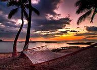 Tropical Beach Hammock Sunset
