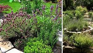 Garten Hügel Bepflanzen : anleitung f r das anlegen und bepflanzen einer kr uterspirale ~ Indierocktalk.com Haus und Dekorationen