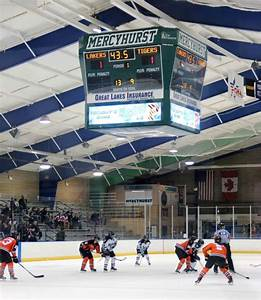 Women's hockey continues rough start to their season – The ...