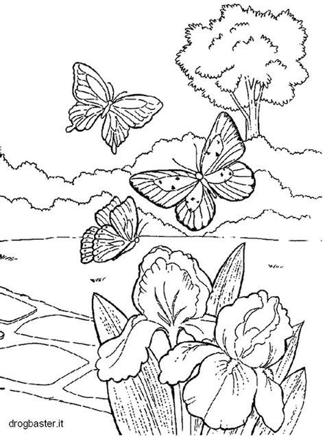 disegni da colorare gratis  bambini