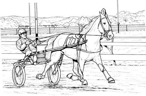 Realistic Horse Coloring Pages Bestofcoloringcom