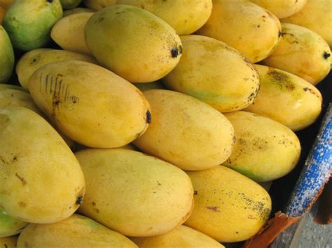 The Incredible Varieties Of Mango