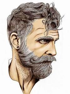 Bearded Gray Haired Man, illustration. | Beard | Pinterest ...