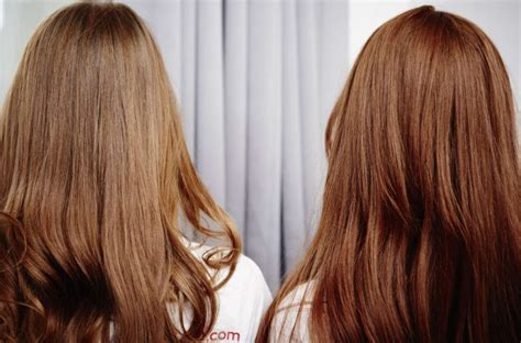 Different Types Hair Dye by Different Types Of Hair Color Hair Colors Idea In 2019