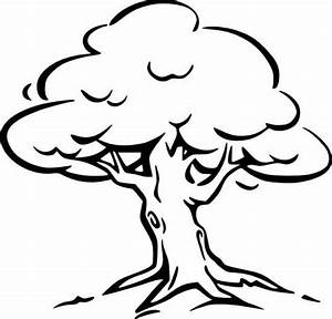 Black and white tree clipart dromfgg top - Clipartix