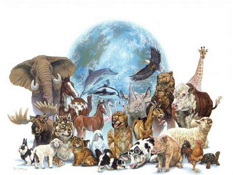 14 Interesting Facts About Animal World Onlinedatahub