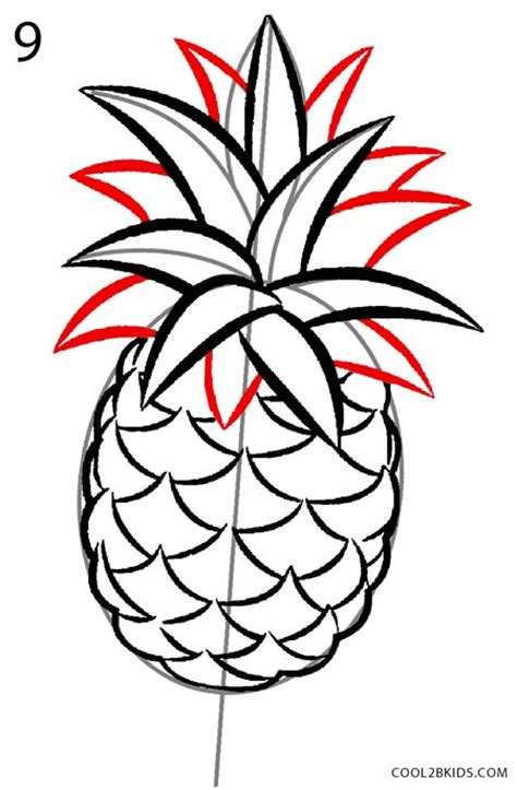 draw  pineapple step  step pictures