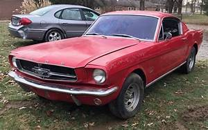 Cheap Fastback: 1965 Mustang
